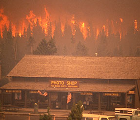 Wildfires in Yellowstone National Park in 1988 destroyed several buildings and nearly a million acres of forest.